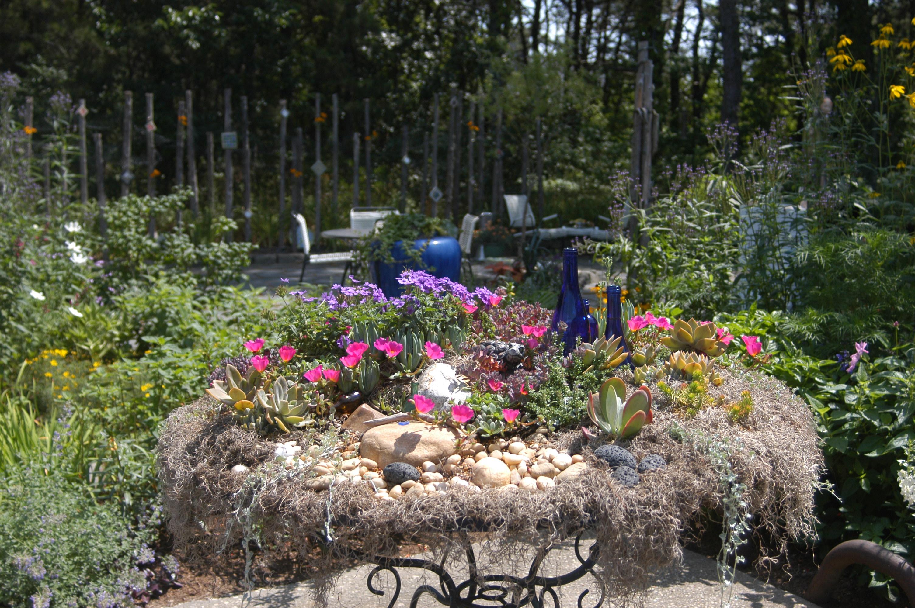 tabletop_garden